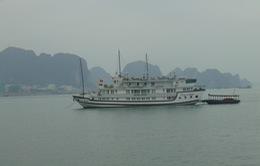 Đình chỉ các tàu thuyền du lịch hoạt động trái phép trên Hồ Tây