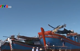 Dừng hoạt động cơ sở đóng tàu không đủ tiêu chuẩn