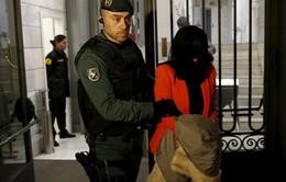 Tây Ban Nha phá đường dây nhập cư trái phép người Trung Quốc