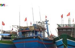 Ngư dân Quảng Bình chuẩn bị vươn khơi sau khi nhận tiền đền bù