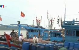 90% tàu cá xa bờ của Hà Tĩnh vươn khơi