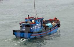 Đề nghị cho 29 tàu cá tránh bão tại Indonesia và Philippines