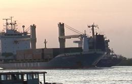 Các hãng tàu phải niêm yết giá dịch vụ vận tải biển