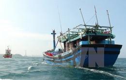 Cứu hộ an toàn 8 ngư dân trên tàu cá Bình Định