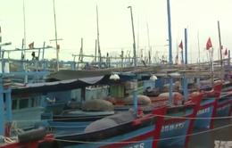 Thái Lan bắt thêm 3 tàu cá và 33 ngư dân tỉnh Kiên Giang