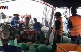 Ngăn chặn tàu cá Trung Quốc xâm phạm chủ quyền Việt Nam