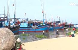 Đằng sau hiện tượng bán tàu cá ở vùng biển Phú Yên