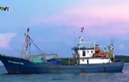 Đưa 11 ngư dân tàu cá Bình Định bị nạn vào bờ an toàn