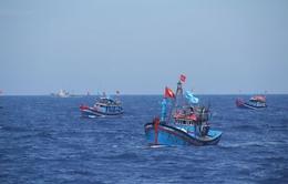 Việt Nam cứu 5 ngư dân Malaysia mắc cạn trên biển