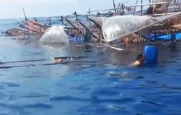 Đề nghị truy tìm chiếc tàu đâm chìm tàu Việt Nam