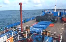 Bình Thuận phát hiện hơn 14 tàu cá lấy tiền hỗ trợ đánh bắt xa bờ