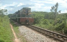 Bình Định: Gia tăng tai nạn giao thông đường sắt do tự tử