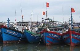 Ứng phó áp thấp nhiệt đới: Cấm không cho tàu, thuyền hoạt động