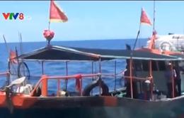 Truy đuổi 6 tàu Trung Quốc ra khỏi lãnh hải Việt Nam