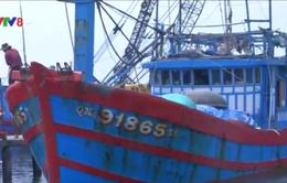 Tàu nước ngoài đe dọa tàu cá ngư dân Quảng Nam