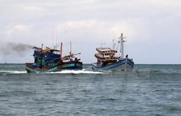 Bình Định cứu tàu cá và 5 ngư dân