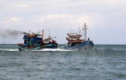 11 ngư dân Quảng Ngãi trên tàu cá trôi dạt chưa chịu lên tàu cứu nạn
