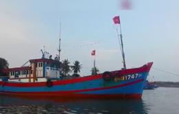 Tàu cá Quảng Nam bị tàu lạ tấn công