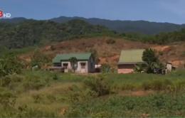 TT-Huế: Khu tái định cư vùng cao thiếu đất sản xuất