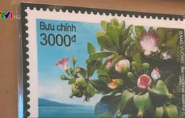 """Phát hành bộ tem đặc biệt """"Bàng vuông"""""""