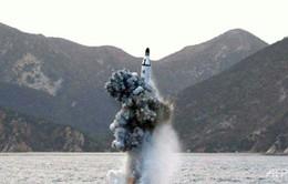Mỹ, Nhật, Hàn thảo luận các biện pháp trừng phạt Triều Tiên