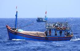 Ngư dân Việt bị mất tích ở Thái Lan vẫn còn sống