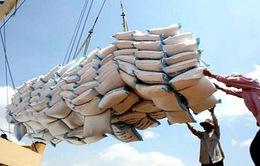 Tăng lượng xuất khẩu gạo chính ngạch sang Trung Quốc