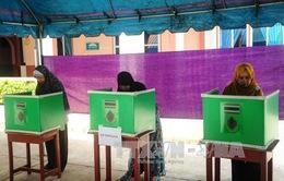 Đa số cử tri Thái Lan ủng hộ dự thảo hiến pháp mới