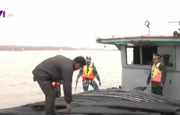 Bắt giữ tàu vận chuyển gần 100 tấn than không rõ nguồn gốc