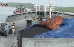 Bắt tàu chở 3.000 tấn than không rõ nguồn gốc