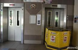 Singapore chi 450 triệu SGD để hiện đại hóa thang máy chung cư