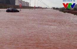 Quỹ Tấm lòng Việt kêu gọi chung tay hỗ trợ đồng bào lũ lụt miền Trung