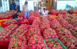 Xuất khẩu nông sản gia tăng mạnh năm 2016