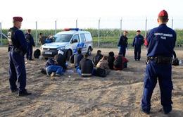 Châu Âu thắt chặt kiểm soát biên giới