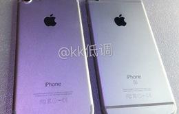 """Lộ ảnh thực tế """"đọ"""" iPhone 7 - iPhone 6S tại Trung Quốc"""
