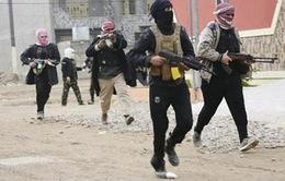 Nhiều nước Arab cam kết điều bộ binh tới Syria