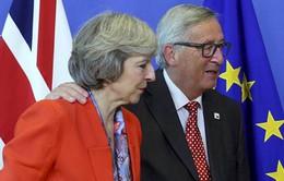 Hội nghị Thượng đỉnh châu Âu thảo luận về Brexit