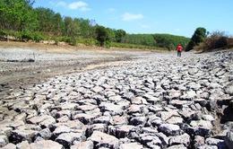 79 tỷ đồng hỗ trợ thiên tai ở Kiên Giang chưa thể giải ngân