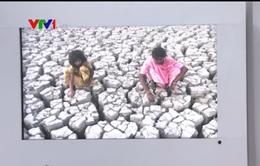 Người dân Ấn Độ chật vật vì thiếu nước