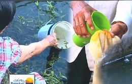 Người dân Long An khổ sở vì thiếu nước sạch