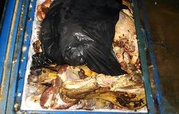 Bình Dương: Phát hiện cơ sở dùng hóa chất biến thịt bò thối thành thịt tươi