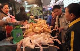 Quản lý Nhà nước cần thực sự hiệu quả nếu nhập khẩu gà Trung Quốc