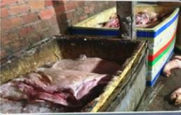 Đồng Nai: Phát hiện gần 2 tấn thịt và xương lợn bốc mùi hôi thối