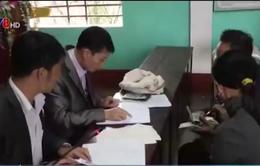 Hà Tĩnh: 153 tấn thóc đã được trả cho người dân xã Kỳ Nam
