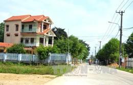 Mùa xuân về trên huyện nông thôn mới Hòa Vang