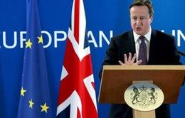 Nước Anh chưa chính thức xin ra khỏi Liên minh châu Âu
