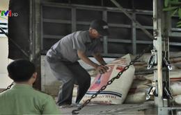Phát hiện 17 tấn đường nhập lậu từ Thái Lan về Việt Nam