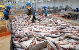 Mỹ cam kết không làm gián đoạn xuất khẩu cá tra, ba sa Việt Nam