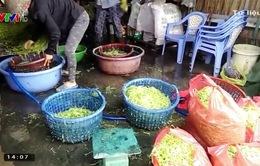 35% số ca ung thư tại Việt Nam có liên quan đến thực phẩm bẩn