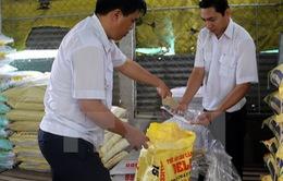 Bộ Y tế và Bộ NN&PTNT phối hợp quản lý kháng sinh